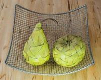 Früchte gemacht vom Bast im silbernen Korb Stockbild