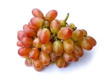 - - Früchte gesetzt auf braunes Heu Lizenzfreie Stockfotos