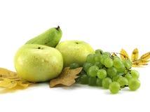 Früchte getrennt lizenzfreie stockfotos