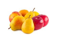 Früchte getrennt auf Weiß. Stockbilder