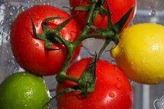 Früchte im Sommer Stockfoto