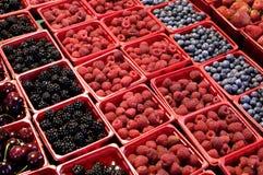 Früchte am Markt Stockfotos