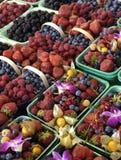 Früchte am Markt Lizenzfreie Stockfotos