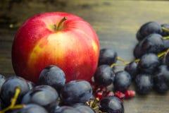 Früchte reifer roter Apfel und blaue Trauben Stockfoto