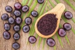 Früchte und acai powde Stockbild