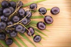 Früchte und acai powde Lizenzfreie Stockfotografie
