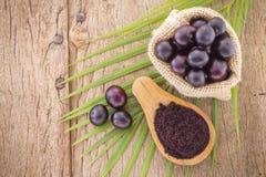 Früchte und acai powde Lizenzfreies Stockbild
