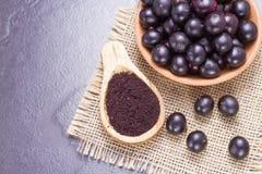 Früchte und acai Pulver Lizenzfreie Stockbilder