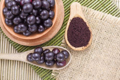 Früchte und acai Pulver Lizenzfreie Stockfotos
