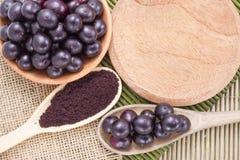 Früchte und acai Pulver Lizenzfreies Stockfoto
