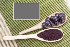 Früchte und acai Pulver Lizenzfreies Stockbild