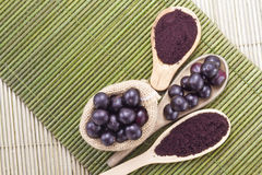 Früchte und acai Pulver Stockbild
