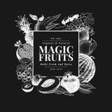 Früchte und Beeren übergeben gezogene Vektorillustration auf Kreidebrett Retro- graviertes Artrahmendesign Sein kann Gebrauch für Lizenzfreie Stockfotos