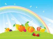 Früchte und Beeren auf Sommerwiese Stockfoto