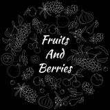 Früchte und Beeren-Hand gezeichnet ringsum Vektor-Satz Stockfotos