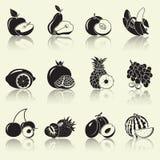 Früchte und Beeren, Schattenbilder Lizenzfreie Stockfotografie