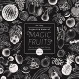 Früchte und Beeren vector Hintergrund auf Kreidebrett Hand gezeichnete Lebensmittelillustrationen Retro- graviertes Artfahnendesi Stockfotografie