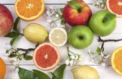 Früchte und Blüten Stockfotografie