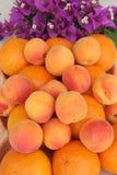 Früchte und Bouganvilla Stockfoto