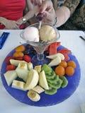 Früchte und Eisschale Stockbild