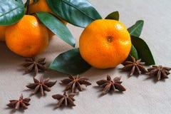 Früchte und Gewürze Lizenzfreie Stockfotos
