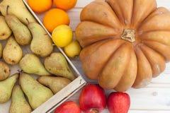 Früchte und Kürbis stockbilder