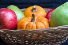 Früchte und Kürbise Stockbilder