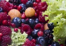 Früchte und Kopfsalat stockbild