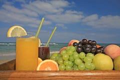 Früchte und Säfte lizenzfreies stockbild