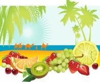 Früchte und Sommer. lizenzfreie abbildung