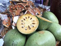Früchte von Aegle-marmelos oder Bael oder indisches bael oder Bengal-Quitte oder goldene Apfel- oder japanischePomeranze oder Hol Stockbild
