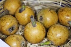 Früchte von Italien-Eriobotrya japonica Lindl   Nespolo Del Giappon Stockbilder