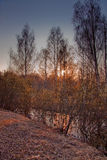 Frühe Frühlingslandschaft Stockfotografie
