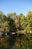 Frühe Herbst-Reflexion Stockbild