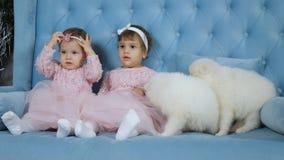 Frühe Kindheit, kleine weibliche Zwillinge in den rosa Kleidern und mit Bögen auf dem Kopf, der für das Foto sitzt auf Sofa mit w stock footage