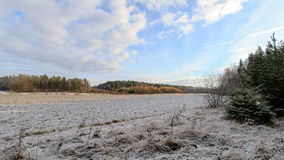 Frühe Winterlandschaft in Schweden Lizenzfreie Stockfotos