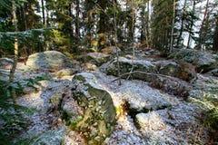 Frühe Winterlandschaft in Schweden Lizenzfreies Stockfoto