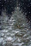 Früher Abend des Schnee-Sturms Lizenzfreie Stockbilder