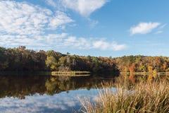 Früher Autumn Morning Reflection im See lizenzfreie stockbilder