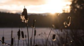 Früher Frühjahrsonnenuntergang auf ruhigem gefrorenem Ostontario See Lizenzfreie Stockfotografie