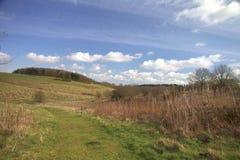 Früher Frühjahrweg Stockfoto