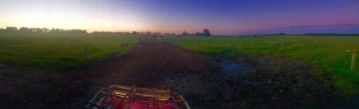 Früher Morgen auf dem Bauernhof Stockfotos