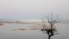 Früher Morgen auf dem Strand Stockfotos