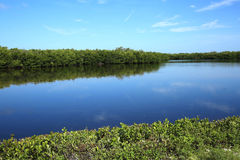 Früher Morgen bei Ding Darling auf Sanibel-Insel, Florida, USA Lizenzfreies Stockfoto