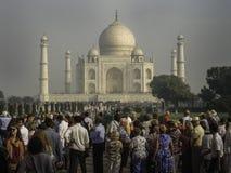 Früher Morgen bei Taj Mahal stockfotos