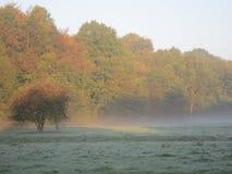 Früher Morgen Cheshire Lizenzfreies Stockbild