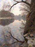 Früher Morgen in dem Fluss lizenzfreie stockfotografie