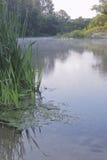 Früher Morgen in der Biegung des Flusses Lizenzfreie Stockfotografie