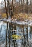 Früher Morgen des Winters und Waldfluß Lizenzfreie Stockfotografie