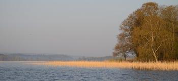 Früher Morgen im Frühjahr an einem See Stockbilder